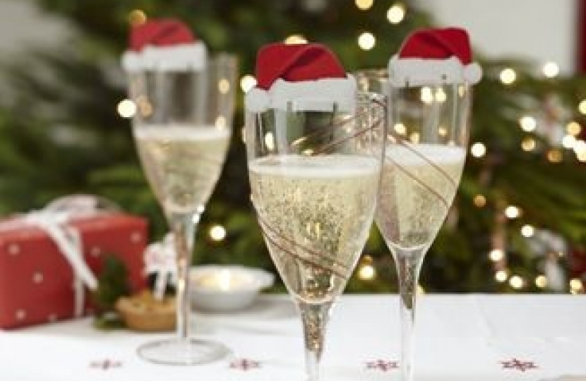 Christmas Drinks Party Ideas Part - 36: Christmas Drinks Party